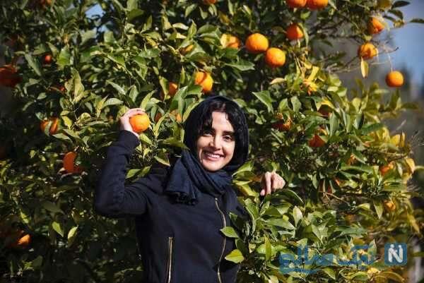 الهه حصاری در باغ پرتقال