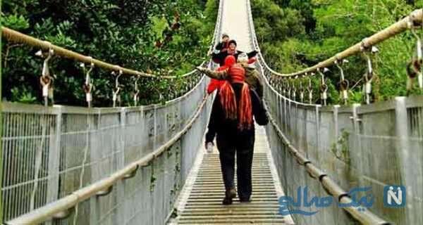 راه رفتن دختر خانم ها روی پل چوبی جنگل