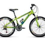 دوچرخه این وسیله نقیله پاک چگونه وارد شهر تهران شد؟!