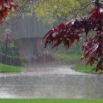مراسمی به نام سويی قازان برای طلب باران!
