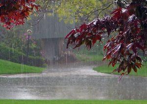 مراسم طلب باران