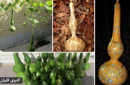 کدوی منقوش (کدوی قلیان) یکی از صنایع دستی استان گیلان را ببینید!+عکس