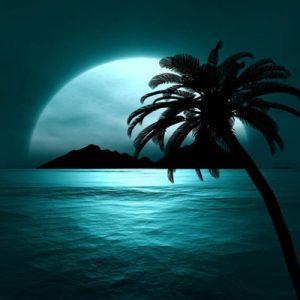 شعر خواندنی «فکرت مکن نیامده فردا را» از پروین اعتصامی!