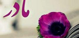 هدیه مناسب برای روز زن مصادف با تولد حصرت فاطمه (س)
