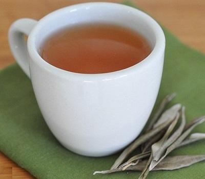 طرزتهیه سالمترین چای در جهان چای زیتون! عکس
