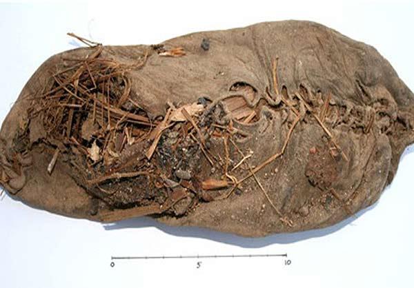 کفش 5500 ساله