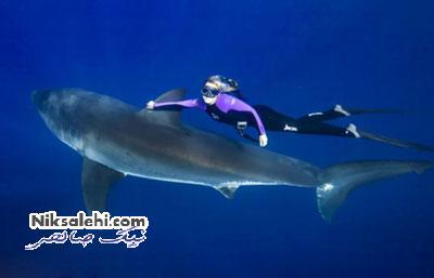 تصاویر دیدنی از شجاعت بی نظیر دختری به نام اقیانوس