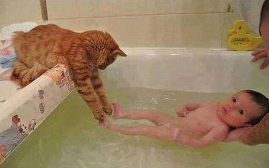 عکس های جالب از سوژه های خنده دار