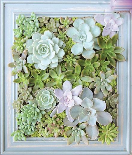 با این گل ها به دکوراسیون فوقالعاده خاص و مدرن برسید