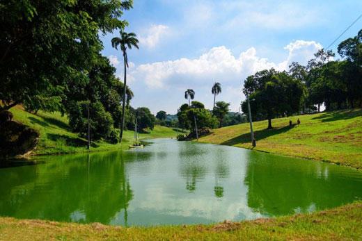 زیباترین و دیدنی ترین پارکها و باغ های ریودوژانیرو را درسفر به ریو از دست ندهید