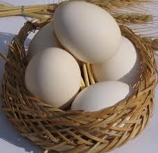 تخم مرغ را بشوییم یا نه ؟!!