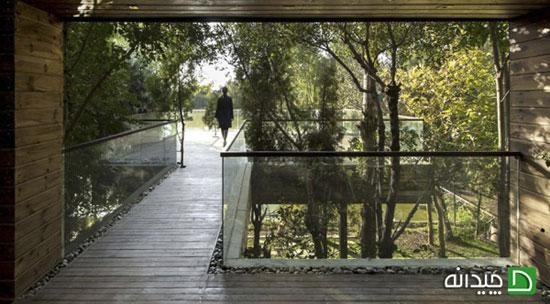 طراحی فضای سبز حیاط در 10 ویلای ایرانی