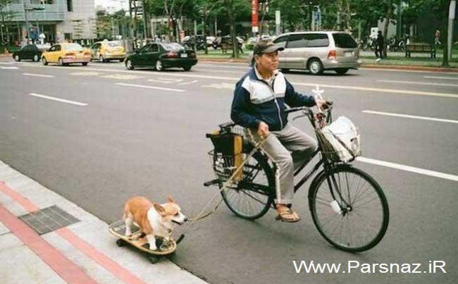 عکس های جالب از سوژه های خنده دار سری 189