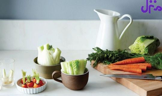 تَه مانده سبزیجات را دوباره سبز کنید