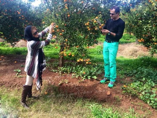 میوه چینی شبنم قلی خانی و همسرش