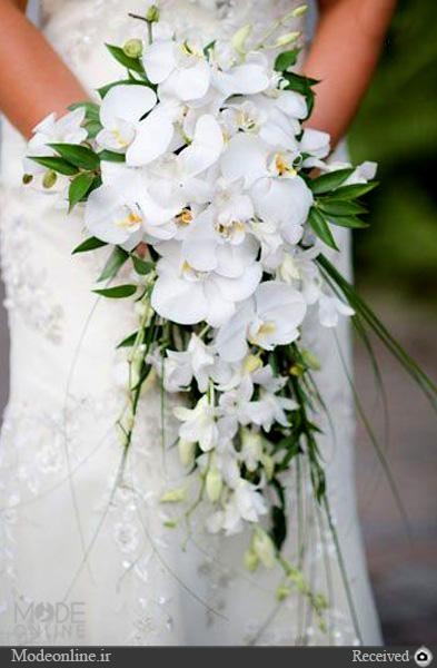 بازگشت دسته گلهای آبشاری به دنیای مد