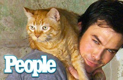 هالیوودی های مشهور که بدجوری طرفدار حیوانات اند!(1) تصاویر
