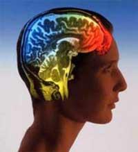 روشهایی سریع و ساده برای افزایش بی نظیر حافظه شما