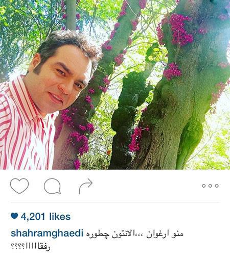 شهرام قائدی و تبریک به علی مشهدی تصاویر