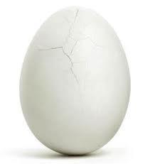ترک تخم مرغ آب پز رو محو کنید!