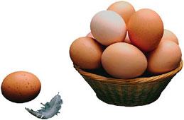 برای اینکه تخم مرغ اب پز نترکد...