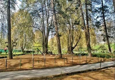 «باغ هارون» جلوهای بسیار زیبا از طبیعت تصاویر