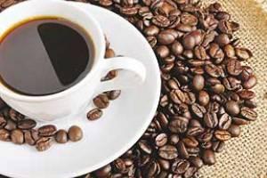 همه چیز درباره دم کردن همه نوع قهوه