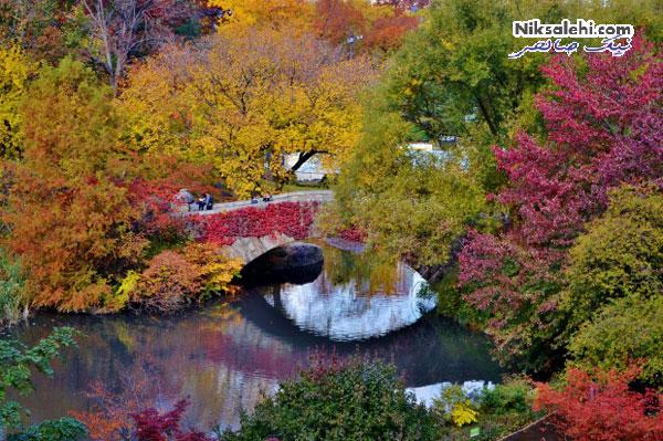تغییر حیرت انگیز طبیعت از تابستان به پاییز