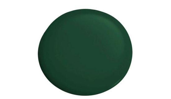 رنگ های تایید شده طراحان برای رنگ آمیزی منزل