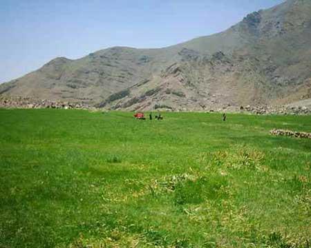 افجه روستایی زیبا در تهران! تصاویر
