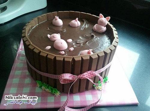 کیک های بسیار عجیب وجالب
