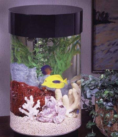 تزئین تنگ ماهی نوروز 93  تصاویر