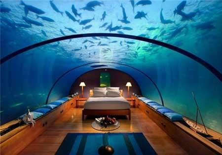 بهشت زیبا در این هتلها  تصاویر