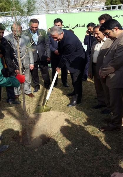 کاشت نمادین چند نهال توسط کفاشیان در آکادمی تیمهای ملی