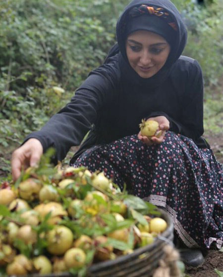 نفیسه روشن و میوه های زیبای انار تصاویر