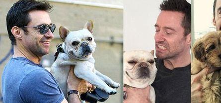 هالیوودی های مشهور که بدجوری طرفدار حیوانات اند!(2) تصاویر