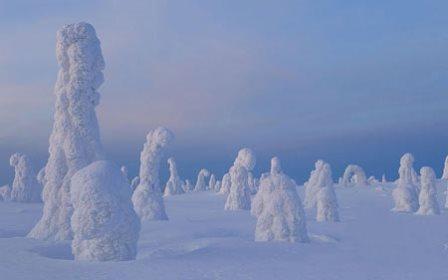 جنگل یخ زده در لاپلند فنلاند زادگاه بابانوئل تصاویر