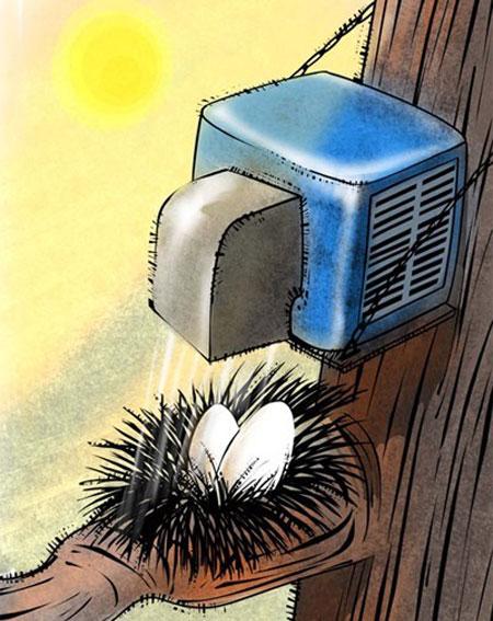 مجموعه کاریکاتورهای تابستان و گرمی هوا