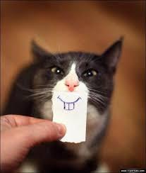 عکس های جالب از سوژه های خنده دار سری 160