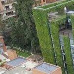 یک باغ عمودی پر از گل و گیاه در کشور کلمبیا