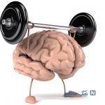 بخوانید: ساده ترین روش تقویت حافظه !