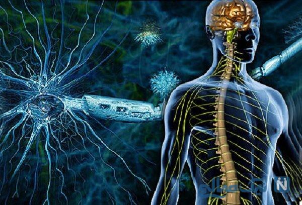 بیماری ام اس و درمان آن