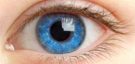 دیدن ذرات شناوری در جلوی چشم