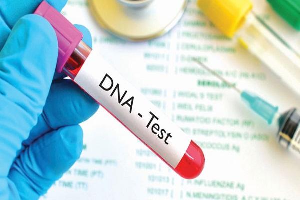آزمایش DNA به چه درد می خورد؟