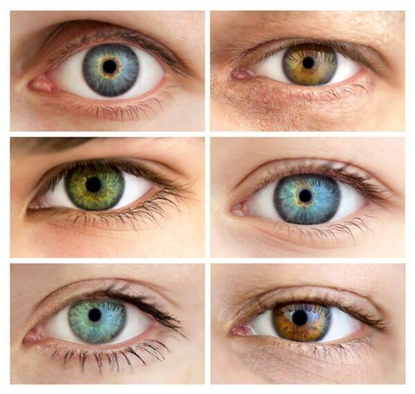 عوامل موثر در رنگ چشم