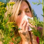 ۵ گیاه دارویی برای درمان حساسیت فصلی