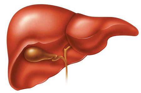 روشهای پاکسازی کبد و خون در ۵ روز