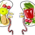 غذاهای مفید برای کلیه را بشناسید