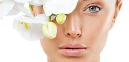 ۱۱ غذای کلاژن ساز قوی برای جوان سازی پوست