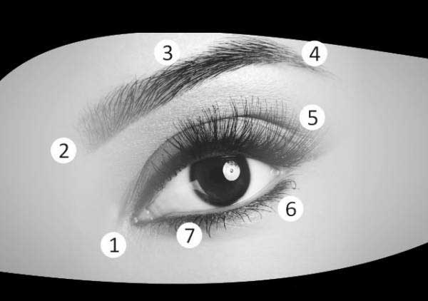 روش های عالی برای تقویت بینایی